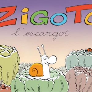 Zigoto copie